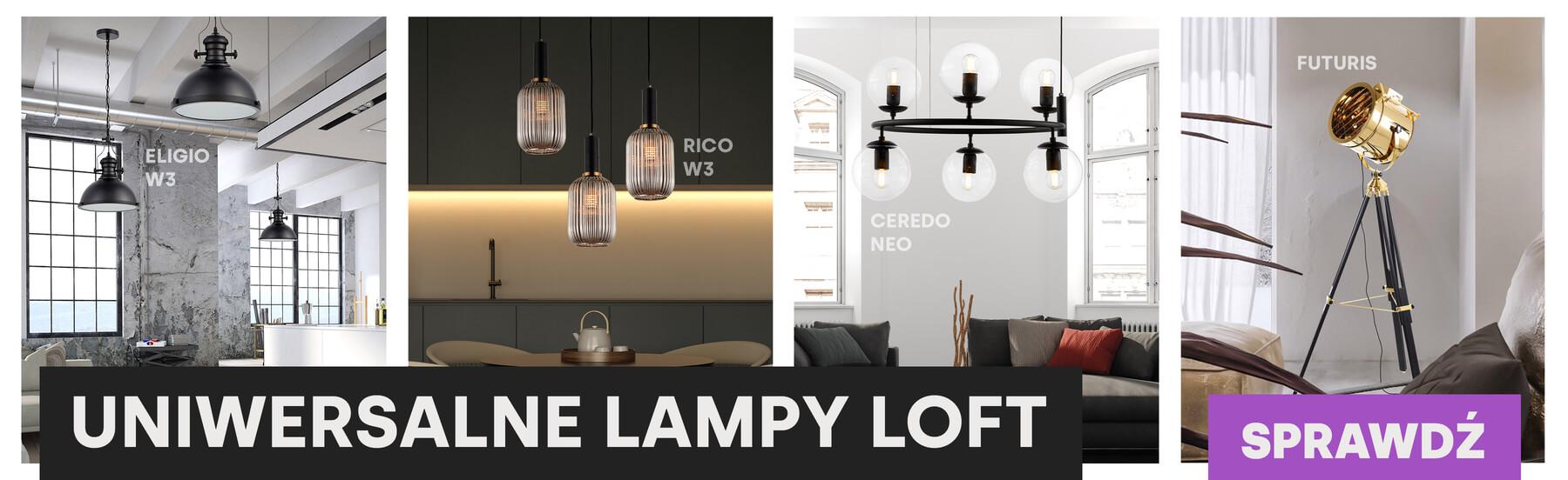 Bogaty asortyment lamp loftowych